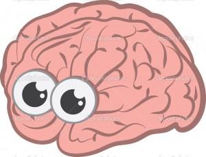 hersenen ogen