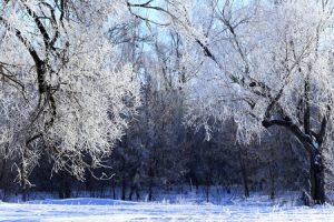 Oogverzorging tijdens de wintermaanden